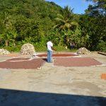 sechage feves feccano haiti