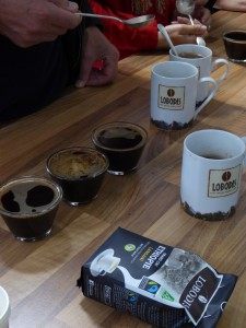 dégustation café lobodis