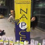 Napce rouvre ses bureaux / rentrée septembre 2020