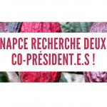 NAPCE recherche 2 co-président.e.s !